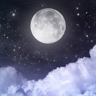 Добровольно к Луне