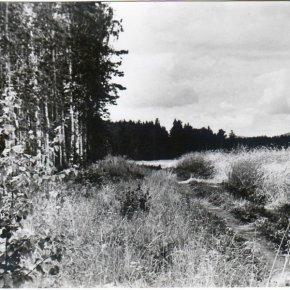Снимки из прошлого